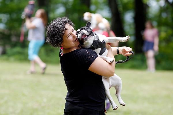 Dog Dance at Jacob's Pillow-071418