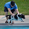 Ryan Keliher helps Curtis the basset hound jump into the pool during the annual Dog Dayz at Scott Carpenter Pool in Boulder, Colorado Monday September 17, 2012. Every year the pool is opened to dogs after the regular season is over and closed to humans. DAILY CAMERA/ JESSICA CUNEO