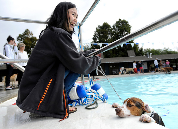 "Thea Hongdoxmai, of Boulder, laughs as her dog Tovan tries to climb out of the pool during Dog Dayz at Scott Carpenter Pool on Monday, Sept. 17, in Boulder. For more photos and video of Dog Dayz go to  <a href=""http://www.dailycamera.com"">http://www.dailycamera.com</a><br /> Jeremy Papasso/ Camera"