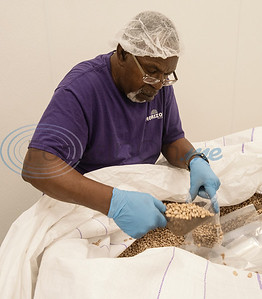Bobby Taylor of Tyler, who is visually impaired, volunteers at the East Texas Food Bank repackaging dried beans with others from the East Texas Lighthouse for the Blind (ETLB) on Monday, Nov. 25, 2019. East Texas Lighthouse for the Blind is a 501c3 non-profit organization, which was created in 1976 to serve the needs of the blind and visually impaired. The mission of The Lighthouse is to empower blind Americans through rehabilitation, education, training, and employment leading to a fully independent lifestyle.   (Sarah A. Miller/Tyler Morning Telegraph)