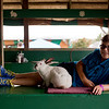 JAY YOUNG | THE GOSHEN NEWS<br /> Eleven-year-old Brady Horein, of Goshen, lounges in the rabbit hut with his year-old rabbit named Buster Monday afternoon at the Elkhart County 4-H Fair.