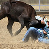 JAY YOUNG | THE GOSHEN NEWS<br /> A competitor in the steer wrestling event tries to force a steer to the ground during the Friday afternoon rodeo at the Elkhart County 4-H Fair.