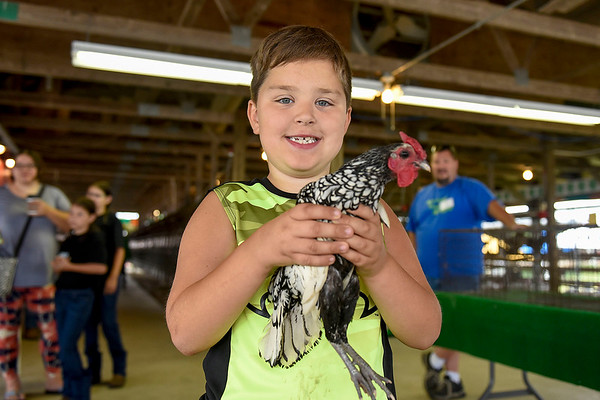 BEN MIKESELL | THE GOSHEN NEWS<br /> William Herr, 7, of Nappanee, with his winning chicken in the crowing contest.
