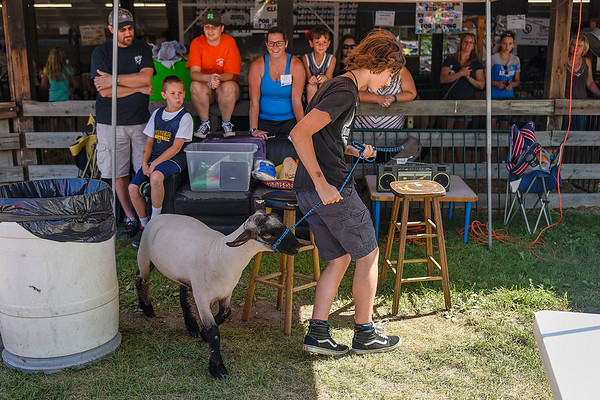 BEN MIKESELL | THE GOSHEN NEWS<br /> Eric Leer, 15, of Goshen, guides his lamb through an obstacle course Thursday afternoon at the Elkhart County 4-H Fair.