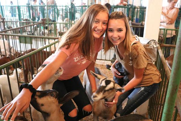Makayla Fry, 13, and Rylan Balentine, 13, both from Goshen