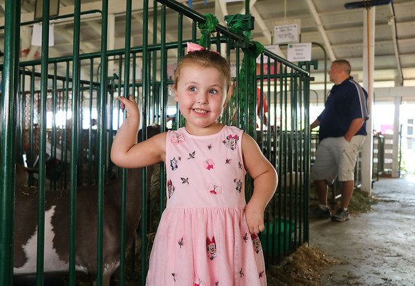 LEANDRA BEABOUT | THE GOSHEN NEWS<br /> Freyja Wolfe, 4, South Bend