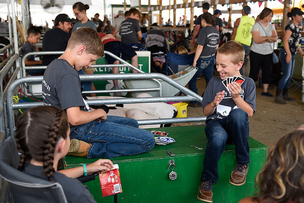 BEN MIKESELL | THE GOSHEN NEWS<br /> Garrett Stoltzfus, 11, of Goshen and Carson Golden, 9, of Nappanee patiently wait for their dairy feeder calf show time by playing a game of UNO Tuesday afternoon at the Elkhart County 4-H Fair.