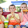LEANDRA BEABOUT | THE GOSHEN NEWS<br /> Luca Felice, 2, Dominic Felice, 7, and Renata Felice, 7, all of Granger.