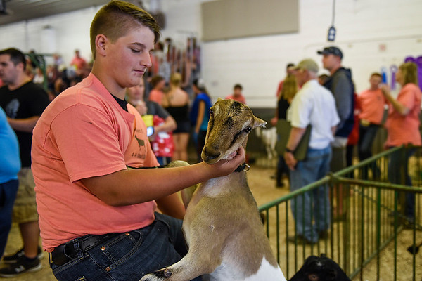 BEN MIKESELL | THE GOSHEN NEWS<br /> Gabe Nagy, 14, of Wakarusa.