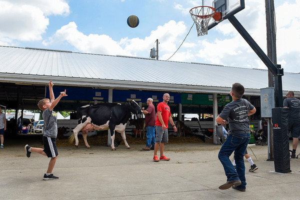 BEN MIKESELL | THE GOSHEN NEWS<br /> While waiting for judging to begin, members of the Elkhart County 4-H Dairy Feeder Calf Club shoot hoops Tuesday at the Elkhart County 4-H Fair.