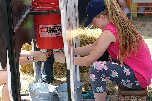 Spencer Tulis/Finger Lakes Times Empire Farm Days opened up this year Tuesday and will continue through Thursday at Rodman Lott & Son Farms on Route 414 in Seneca Falls. Farm Days offers daily demonstration, dozens of vendors and displays and plenty of great  food booths. Sofie Kachmaryk, 10, of Blomflield gives it a go during a kid's milking contest.