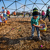 JAY YOUNG | THE GOSHEN NEWS<br /> Five-year-old Jaxon Klinedinst, of Goshen, finds a quiet spot under the geodesic dome to collect eggs during an Easter egg hunt Saturday morning at New Paris Elementary School. The egg hunt was sponsored by the New Paris Lions Club and contained 4,000 eggs.