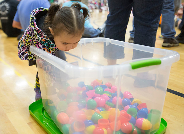 JAY YOUNG | THE GOSHEN NEWS<br /> Two-year-old Meygan Tadeo, of New Paris, is enthralled by all the colorful eggs during an Easter egg hunt Saturday morning at New Paris Elementary School. The egg hunt was sponsored by the New Paris Lions Club and contained 4,000 eggs.