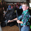 HALEY WARD | THE GOSHEN NEWS <br /> Gavin Neff, 11, smiles after his steer Midnight won Grand Champion during the LaGrange County Fair on Monday.