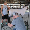 HALEY WARD | THE GOSHEN NEWS <br /> Drake Yoder watches over has Brandon Mauck sheers his sheep during the LaGrange County Fair on Monday. Yoder, who has been involved in 4-H for 5 years, showed his two sheep Fat Albert and Elmer Monday night.