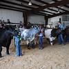 HALEY WARD | THE GOSHEN NEWS <br /> Kids in 4-H show off their steers during the final round of competition for Grand Champion during the LaGrange County Fair on Monday.