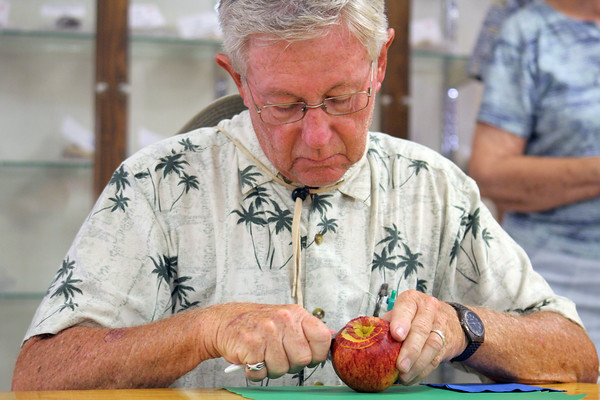 JULIE CROTHERS   THE GOSHEN NEWS<br /> <br /> Ned Miller, of Goshen, begins the process of peeling his apple during Tuesday's competition at the Elkhart County 4-H Fair. First place went to Stacey Thorpe, of Fort Wayne, whose apple peel was 82 and 1/2 inches long.