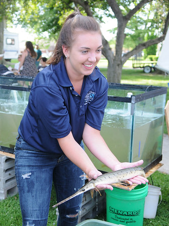 HALEY WARD | THE GOSHEN NEWS<br /> Maddie Boyer from Clean River Healthy Neighborhoods holds  a Longnose Gar for people to touch during First Fridays in downtown Goshen. The fish was caught locally from the Elkhart River.
