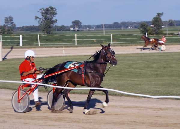 DENISE FEDOROW | THE GOSHEN NEWS<br /> East of Nappanee, trottingbred harness racing was taking place at Nappanee Raceway. Although not officially part of the city's Embrace the Pace Days, watching the horses trot around the dirt track is an enjoyable way to spend a summer evening.