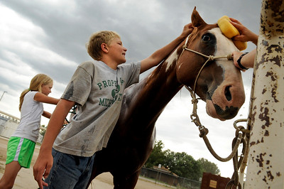 "Kaitlyn Faye, 10, at left, Tyler Faye, 12, and their mother Michelle Faye, of Firestone clean ""Rosie"" the horse to prepare her for halter and showmanship at the Indoor Arena at the Boulder County Fairground in Longmont on Thursday, July 29. Jeremy Papasso/ Camera"