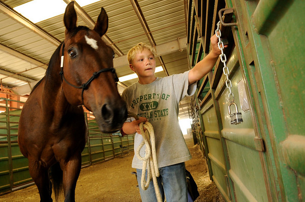 "Tyler Faye, 12, of Firestone, puts ""Moose"" the horse back in his stall at the Indoor Arena at the Boulder County Fairground in Longmont on Thursday, July 29. Faye was returning the horse after cleaning him for halter and showmanship.<br /> Jeremy Papasso/ Camera"