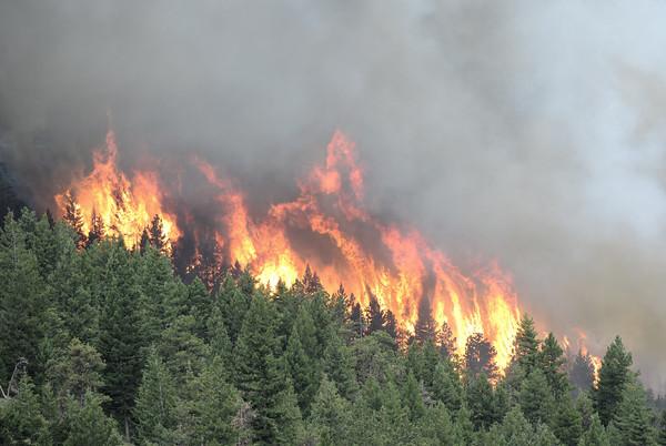 0626Fire2.jpg Bison Dr fire crowning in Boulder, 2012. CAMERA/ MARK Leffingwell