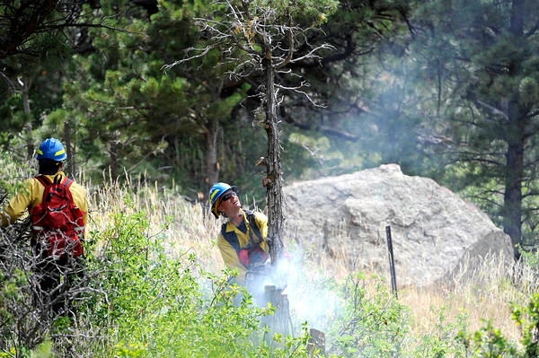 A firefighter fells a dead tree while working behind some houses near Stony Hill Rd. and Rockmont Cir. in Boulder Wednesday afternoon fighting the Flagstaff Fire in Boulder. Andy Cross, The Denver Post