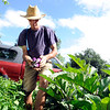 """Scott Hoffenberg gathers up some eggplant he is picking at the Flatirons Neighborhood Farm in Boulder <br /> Photo by Paul Aiken  August 4, 2011.<br /> FOR MORE PHOTOS FROM THE FARM GO TO  <a href=""""http://WWW.DAILYCAMERA.COM"""">http://WWW.DAILYCAMERA.COM</a>"""