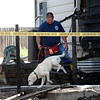 20110705_FIRE_FREDERICK_04.JPG Longmont Fire Department firefighter Mike Manzo and K-9 Shadow investigate a fire at 4897 Wren Court in Frederick on Tuesday, July 5, 2011. Frederick-Firestone Protection District responded shortly before midnight Monday to the blaze, which also damaged 4895 Wren Court. (Richard M. Hackett/Times-Call)