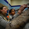 KRISTOPHER RADDER - BRATTLEBORO REFORMER<br /> Suzanne Paugh, an art teacher at NewBrook Elementary, helps fourth-grader Morgan-Taylor Spano stuff a letter into a falcon time capsule during an assembly on Tuesday, Feb. 13, 2018.