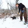 KRISTOPHER RADDER - BRATTLEBORO REFORMER<br /> Jessica Snyder, of New England Falconry, instructs Piper, a Jagdterrier and Jack Russell mix, to go into a brush pile while Carson, a Harris's Hawk, watches during a hunt in Rutland on Jan. 19, 2018.