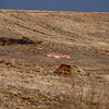 The scene of an airplane and glider crash near where U.S. 36 meets with Broadway just outside of Boulder, Saturday, Feb. 6, 2010. <br /> KASIA BROUSSALIAN