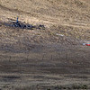 The scene of debris of an airplane and glider crash near where U.S. 36 meets with Broadway just outside of Boulder, Saturday, Feb. 6, 2010. <br /> KASIA BROUSSALIAN