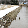 Reporter photo by Rod Rose<br /> A line in the snow shows the height of Prairie Creek during the peak of overnight flooding Friday.