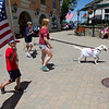 ELODIE REED - FOR THE BENNINGTON BANNER Stratton Mountain Resort employee Bailey Petri and her dog, Alta, lead the Doggie Village Parade Saturday at Fidofest while Ryan Stahlhut, 7, of Sayville, New York, holds the flag.
