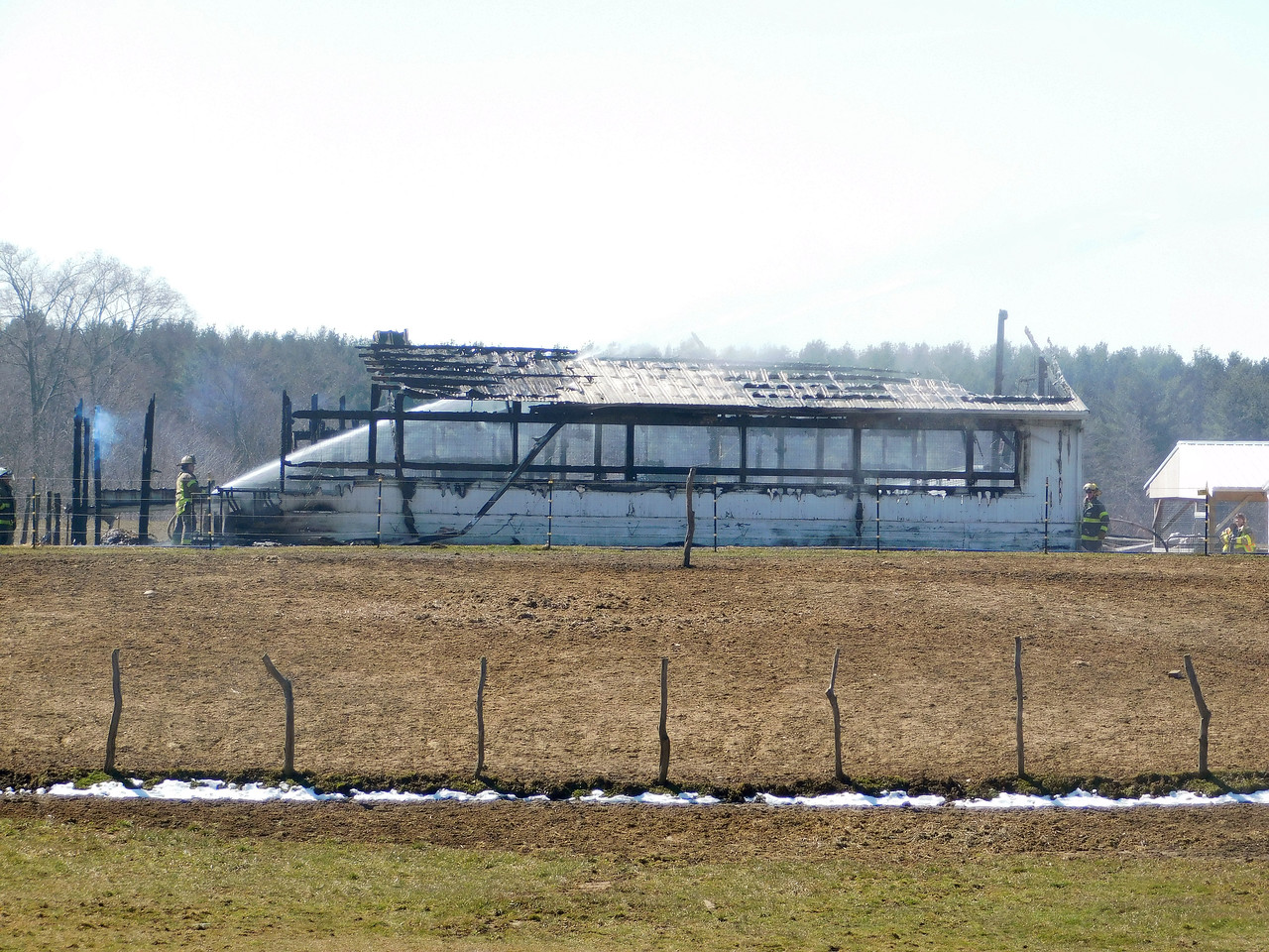 NATHAN HAVENNER / GAZETTE Thirteen cattle died in a barn fire Monday morning at Mennell Acres in Chatham Township.