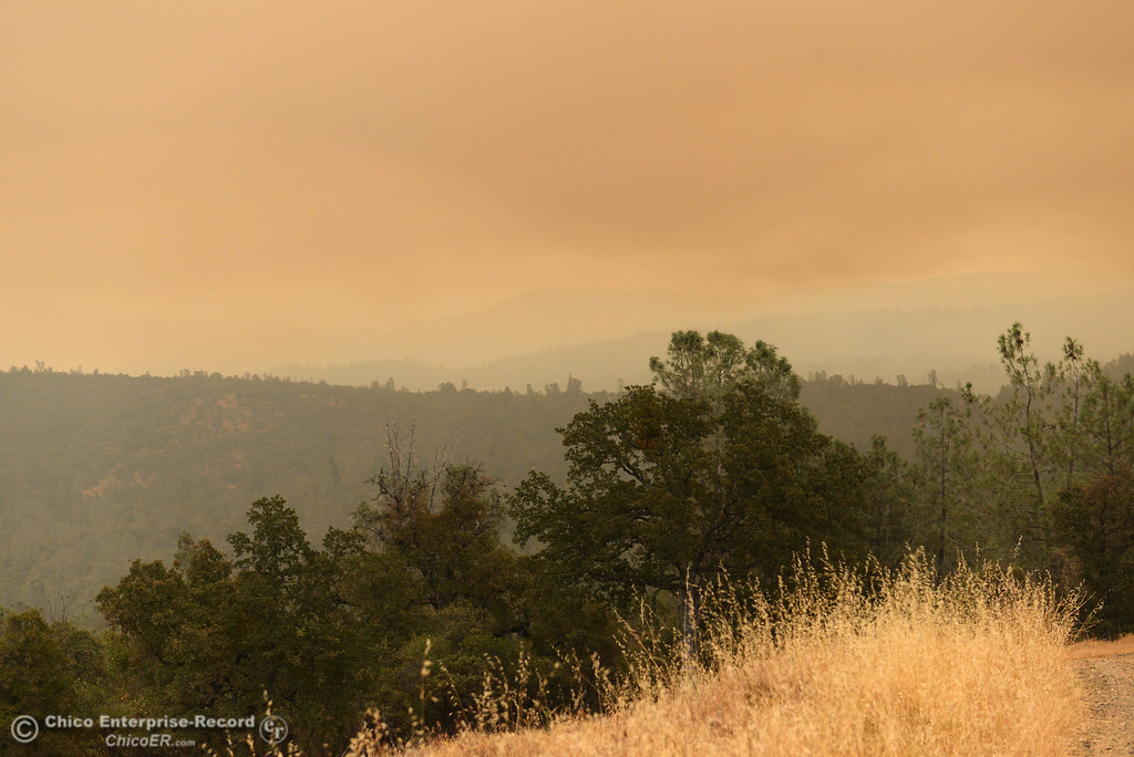 . Smoke lingers in the air looking east from Jerrigan Way as mandatory evacuation areas around the Swedes Fire southeast of Oroville that were expanded just after noon Saturday, August 17, 2013 in Oroville, Calif.  (Jason Halley/Chico Enterprise-Record)