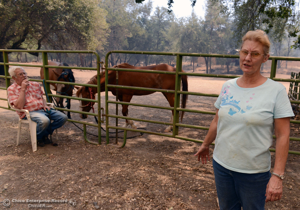 . Mary Kissee (right) talks about calling North Valley Animal Disaster Group to help move her horses Honey Rose and Rainy from her property along Hurleton Swedes Flat Rd. as mandatory evacuation areas around the Swedes Fire southeast of Oroville were expanded just after noon Saturday, August 17, 2013 in Oroville, Calif. Bill Horn (left) sits waiting for emergency crews to arrive. (Jason Halley/Chico Enterprise-Record)
