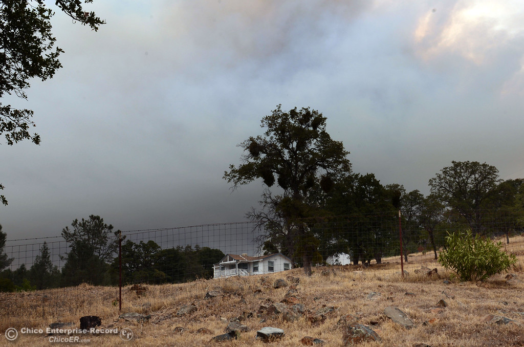 . A column of smoke rises from the Swedes Fire, seen from Swedes Flat Rd., as mandatory evacuation areas around the Swedes Fire southeast of Oroville were expanded just after noon Saturday, August 17, 2013 in Oroville, Calif.  (Jason Halley/Chico Enterprise-Record)