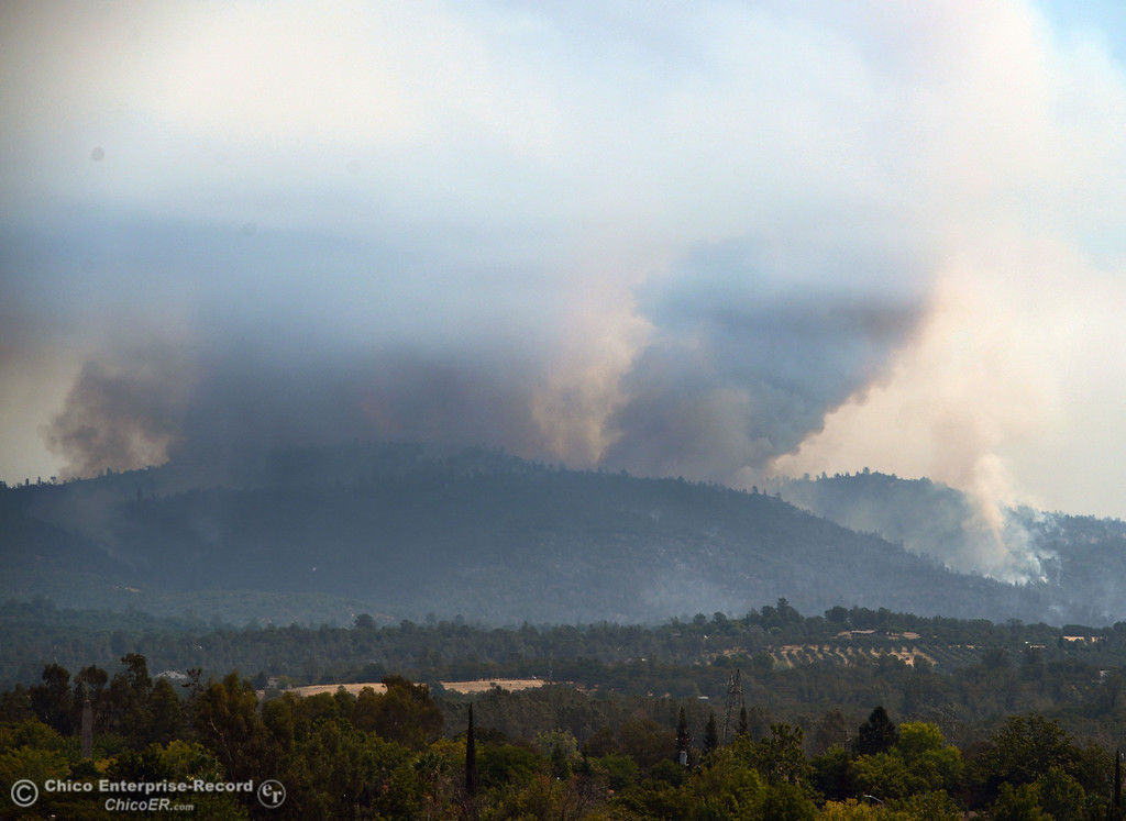 . A column of smoke rises from the Swedes Fire, seen from Monte Vista Ave, as mandatory evacuation areas around the Swedes Fire southeast of Oroville were expanded just after noon Saturday, August 17, 2013 in Oroville, Calif.  (Jason Halley/Chico Enterprise-Record)