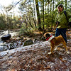 KRISTOPHER RADDER — BRATTLEBORO REFORMER<br /> Richard Mellon, of Chesterfield, N.H.,  walks his dog Avery on the Doolittle Trail at Pisgah State Park, in Winchester, N.H., during New Hampshire's First Day Hike on Jan. 1, 2019.  Hodge said they saw the event on Facebook and thought it was a beautiful day for a hike.