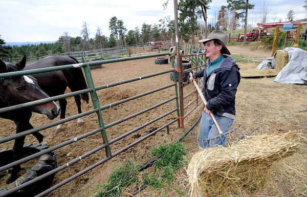 """Mike Walker, co-owner of the Colorado Mountain Ranch near Gold Hill, feeds the horses Sunday evening. He lost his home, barn and workshop, but is rebuilding with his wife Lynn.<br /> For more photos and a video of the ranch, go to  <a href=""""http://www.dailycamera.com"""">http://www.dailycamera.com</a>.<br /> Cliff Grassmick / August 28, 2011"""