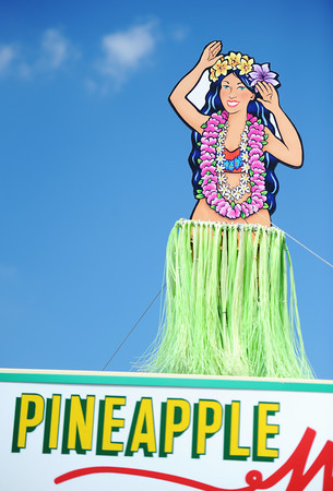 Globe/T. Rob Brown<br /> The animated Hawaiian hula woman atop the Pineapple Whip vendor has been a popular sight at the site Friday morning, July 19, 2013, during the Four State Farm Show near Pittsburg, Kan.