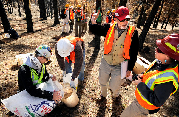 "Crew leader Mick Syzek speaks with Erica Christensen, right, of Boulder County Parks and Open Space, about the burned forest on Saturday, March 19, during a volunteer seeding effort on Salina Mountain Rd. in the Fourmile Canyon area of Boulder. The volunteers are part of the Wildlands Restoration Volunteers organization that are working to re-grow the burned vegetation in the area caused by the Fourmile Canyon wildfire. For more photos go to  <a href=""http://www.dailycamera.com"">http://www.dailycamera.com</a><br /> Jeremy Papasso/ Camera"
