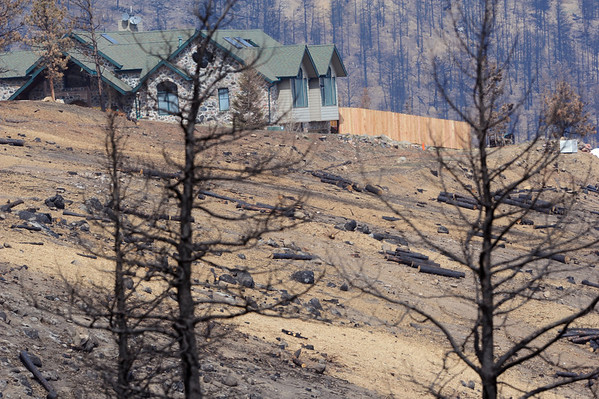 MULCH<br /> Straw mulch lies on the ground in the Fourmile Fire burn area, deposited by helicopter in an effort to reduce flooding risk.<br /> Photo by Marty Caivano/April 7, 2011