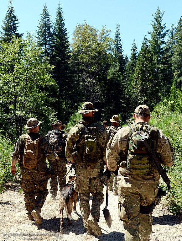 . Several members of a multi agency Special Enforcement Unit begin their hike out after they eradicated nearly 7,300 marijuana plants from a remote area in Upper Concow Thursday, Aug. 15, 2013. Two suspects were arrested in the marijuana garden. (Bill Husa/Staff Photo)