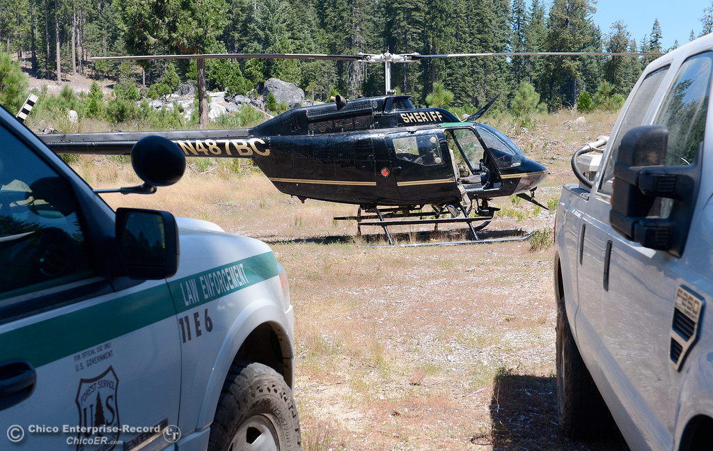 . The Butte County Sheriff\'s helicopter is used to eradicate nearly 7,300 marijuana plants from a remote area in Upper Concow Thursday, Aug. 15, 2013. Two suspects were arrested in the marijuana garden. (Bill Husa/Staff Photo)