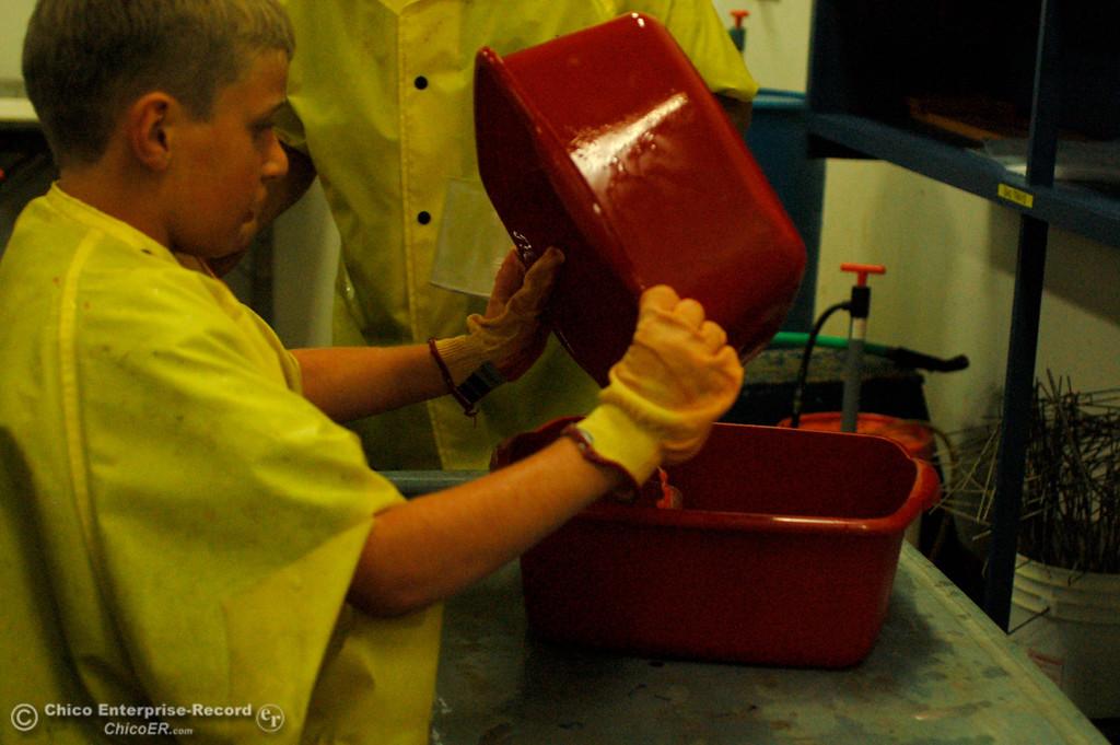 . Dillon Jordan, 9, helps move fertilized eggs during the Salmon Festival on Saturday, Sept. 28, 2013. (Dan Reidel/Staff Writer)