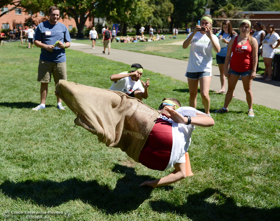 . Chico State students Charlie Curtis, 19, flips to a finish a sack race as an alternative activity to floating on the Sacramento River for Labor Day at the Wildcat Challenge event on the lawn between Lassen Hall and Sutter Hall on the Chico State Campus Saturday, August 31, 2013 in Chico, Calif.  (Jason Halley/Chico Enterprise-Record)