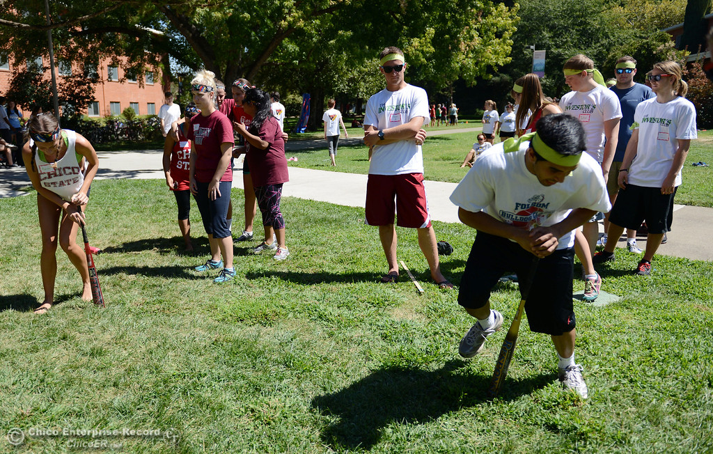 . Chico State students Ashley Simon, 20 (left) races Virender Shergill, 20, (right) in a dizzy bat contest as an alternative activity to floating on the Sacramento River for Labor Day at the Wildcat Challenge event on the lawn between Lassen Hall and Sutter Hall on the Chico State Campus Saturday, August 31, 2013 in Chico, Calif.  (Jason Halley/Chico Enterprise-Record)